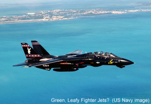 Navy Fighter Jet