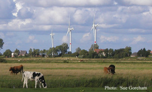 Germany Wind Turbines